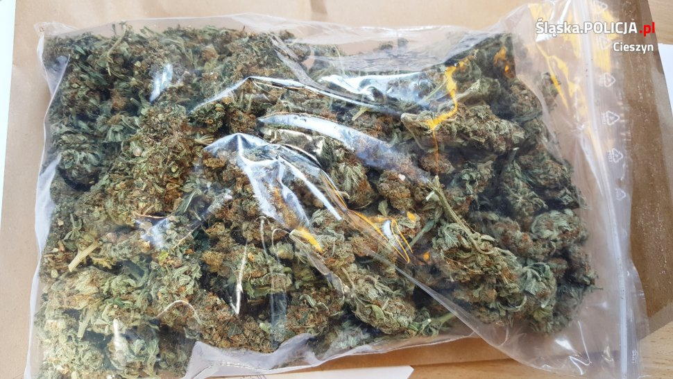 Cieszyńska policja zatrzymała 30-letniego mieszkańca Mikołowa. Posiadał przy sobie 200 gramów marihuany.