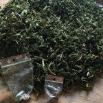 Bielsko0Biała - zatrzymanie przez policję. 20 porcji marihuany