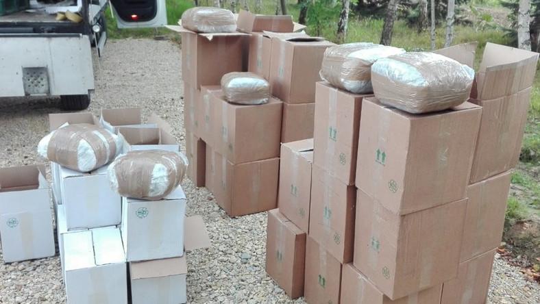 15 ton marihuany kibole policja