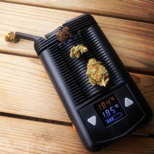 mighty waporyzator cannabis news. Jak pozbyc sie zapachu marihuany?