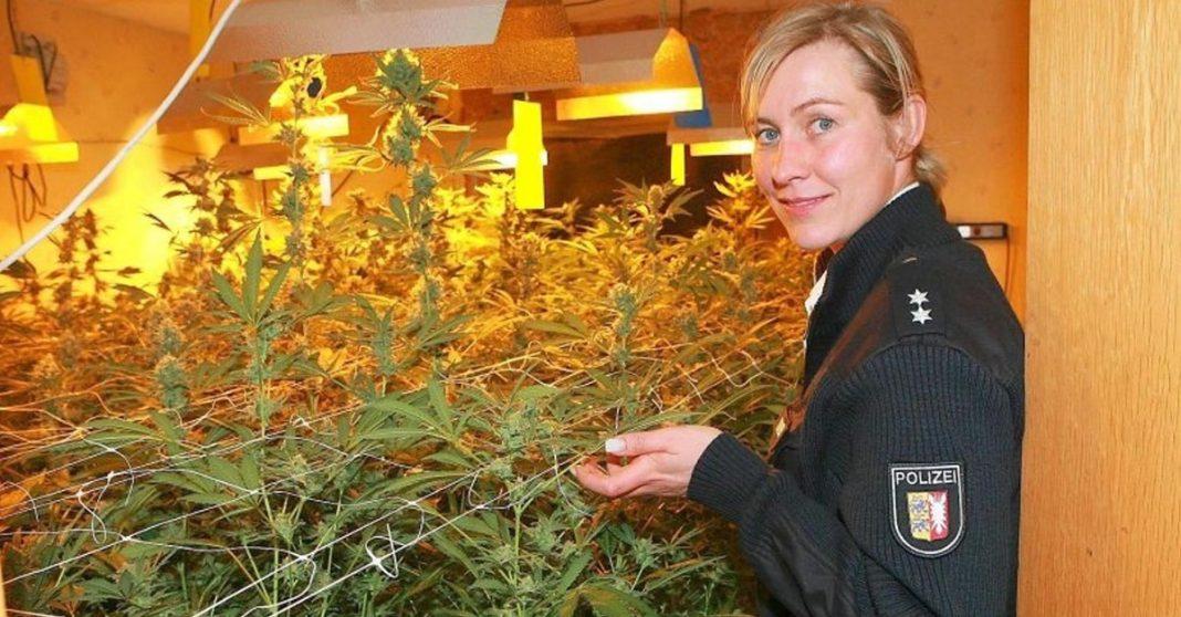 niemiecka policja chce legalizacji marihuany