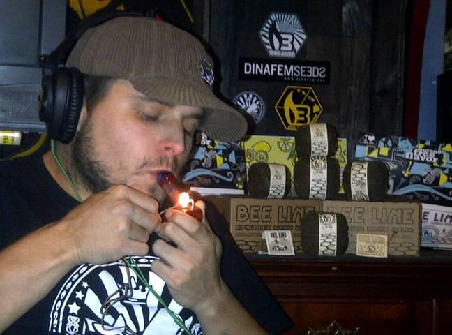bobby nuggz wywiad cannabisnews sickmed seeds
