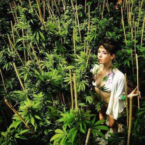 big mike milioner król instagrama Advanced Nutrients marihuana