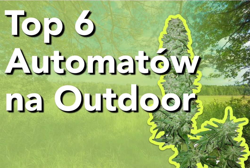 Top 6 Automatów na Outdoor