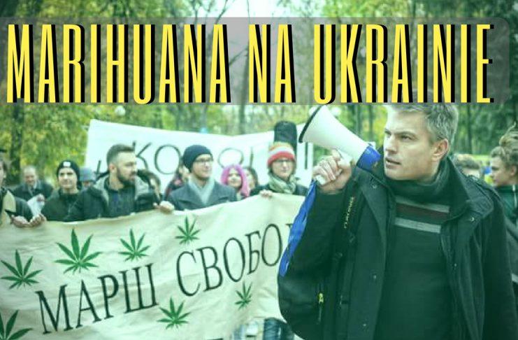 KARY ZA POSIADANIE, GRZYWNY I SKORUMPOWANA POLICJA - MARIHUANA NA UKRAINIE