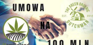 HEMPOLAND I KANADYJSKA FIRMA THE GREEN ORGANIC DUTCHMAN PODPISALY UMOWE WARTA 100 MILIONOW ZŁOTYCH