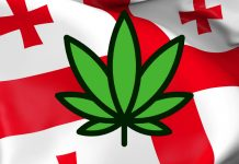 Gruzja legalizuje marihuanę