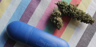 Susz CBD, czyli ziele konopi siewnych, często mylony jest z medyczną marihuaną, choć różni się od niej pod wieloma względami. Jakie różnice występują pomiędzy nimi i czym jest susz CBD?