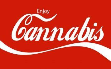 Coc-Cola chce produkowac napój konopny z zawartością CBD. Coca - Cola z marihuaną?