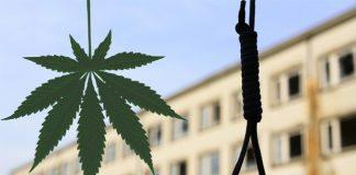 W Malezji skazano człowieka za leczenie ludzi medyczna marihuaną