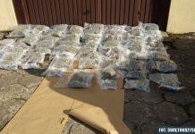 Młode małżeństwo z Kielc przewoziło w samochodzie 30 kg marihuany. Zostali zatrzymani przez Kielecka policję. Grozi im co najmniej 3 lata więzienia.