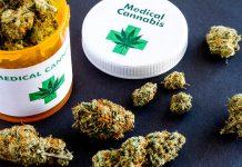 Marihuana medyczna w aptekach - Spectrum cannabis zarejestrowało lek