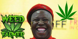 Południowa Afryka zalegalizowała marihuanę