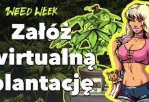 Nowy WeedWeek - odcinek 12. Gra o marihuanie, zioło w samolocie a w Polsce zamykaja za produkcję leku na raka.