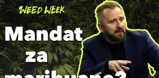 Mandat za Marihuanę zamiast więzienia