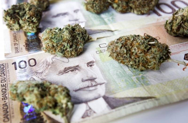 Kanadyjski rząd sugeruje aby płacić gotówką za marihuanę