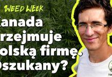 WeedWeek 25 - Kanada oszukała HemPoland. Kowalski wyrzucony ze spółki. Wyrok za 1,07 grama