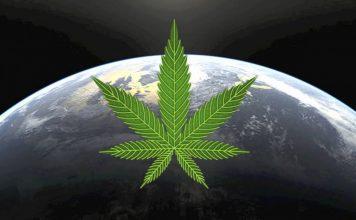 W których miastach spożywa się najwięcej marihuany na świecie?