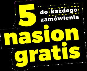5-nasion-gratis