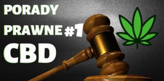 Czy susz CBD jest legalny? Porady prawne CannabisNews