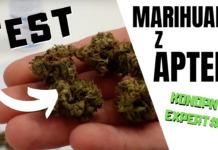 Recenzja suszu medycznej marihuany z apteki - Aurora Pedanios