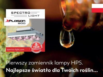 Pierwszy zamiennik lamp HPS. Najlepsze światło do uprawy marihuany.