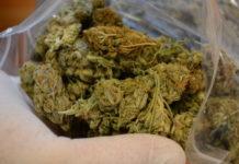 Wymachiwał marihuana w centrum wrocławia.