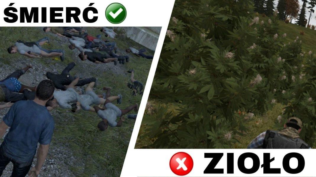 Survivalowa gra DayZ została całkowicie zabroniona w Australii. zpowodu odpalonego jointa, który leczy bohatera