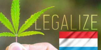 Luksemburg chce zalegalizować marihuanę do użytku rekreacyjnego w ciągu 2 lat.