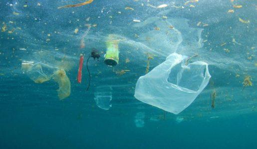 PLastik zanieczyszcza oceany. Czy plastik konopny jest rozwiązaniem?