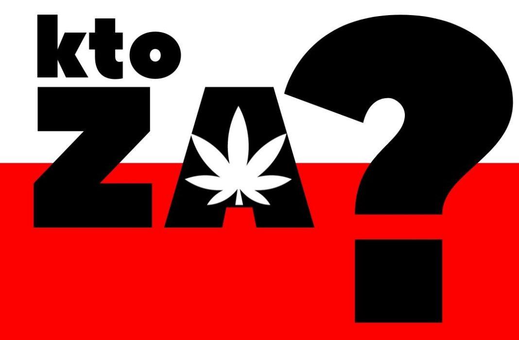 Sprawdzamy, która partia polityczna jest za legalizacją marihuany albo za zniesieniem kar za marihuanę