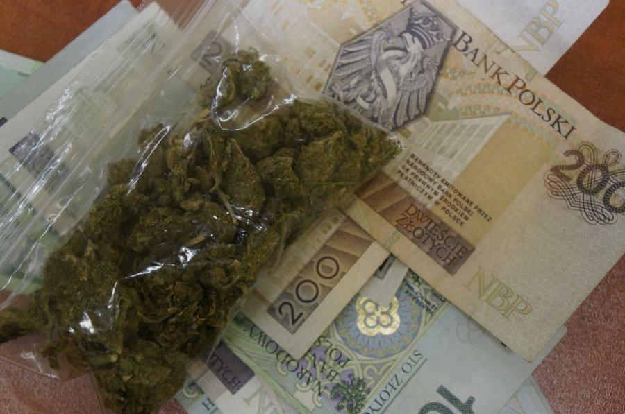 Miliardy dolarów na konopiach zarobić mogą inwestorzy i państwa, które marihuanę zalegalizują. Nowe miejsca pracy.