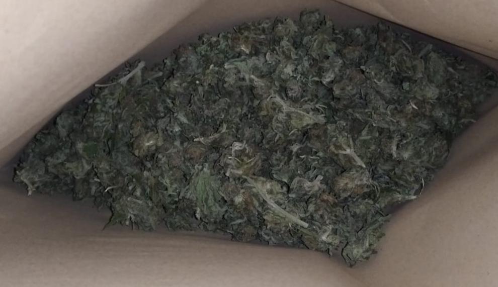 Marihuana Amfetamina Ostrów Wielkopolski