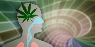 Jak osiągnąć szczęście z czasów młodości po marihuanie?