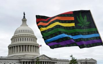 Donald Trump za legalizacją Farm Bill