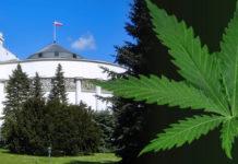 Parlamentarny Zespół ds. Legalizacji marihuany rozpoczął pracę. Zespół będzie omawiał ekonomiczne, społeczne i zdrowotne skutki legalizacji marihuany.