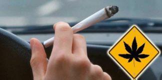Jazda dużymi prędkościami, ścinanie zakrętów, zjeżdżanie na przeciwległe pasy oraz wypadki, a nawet potrącenia pieszych. To tylko niektóre skutki palenia marihuany przed 16 rokiem życia – wynika z najnowszych badań przeprowadzonych przez naukowców z USA.