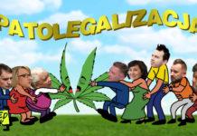 Zespół do spraw Legalizacji Marihuany relacja wideo