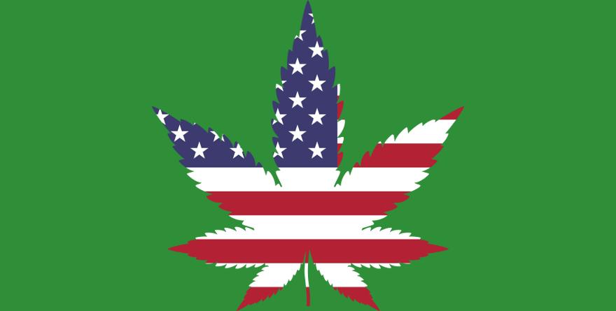 Ponad 11 tys. osób skazanych za przestępstwa związane z marihuaną ułaskawił gubernator amerykańskiego stanu Illinois. To skutki wprowadzenia legalizacji marihuany od Nowego Roku. Nowe przepisy nie tylko ucieszyły skazanych, ale również władze stanu, który tylko w pierwszym dniu na konopiach indyjskich zarobił ponad 3 mln dolarów!