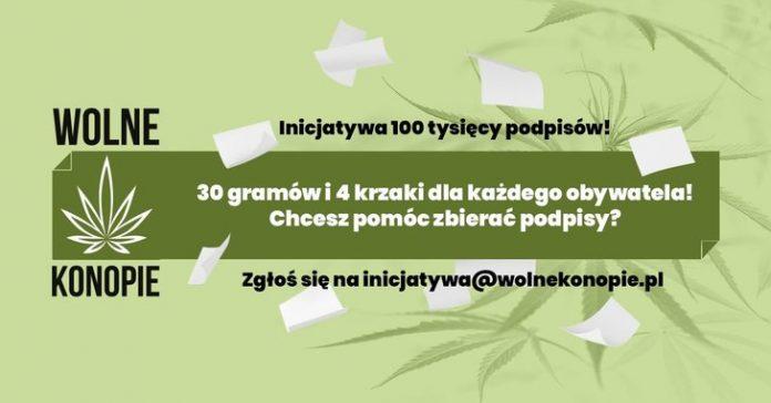 4 krzewy marihuany oraz 30 gramów suszu zupełnie legalne? Pod takim projektem ustawy Wolne Konopie chcą zebrać 100 tysięcy podpisów, które trafią do Sejmu. Posłowie będą musieli wówczas zdecydować, czy za posiadanie 4 krzaków i 30 gramów konopi indyjskich powinny zostać zniesione kary.