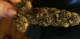 To nie żaden fake news, tylko przypadek zdiagnozowany przez gruzińskich lekarzy. 32 letni pacjent trafił do szpitala z bolesną i długotrwałą erekcją! Lekarze doszukiwali się wielu przyczyn priapizmu. Ostatecznie ustalili, że do 12 godzinnej erekcji u 32 latka przyczyniło się palenie marihuany!