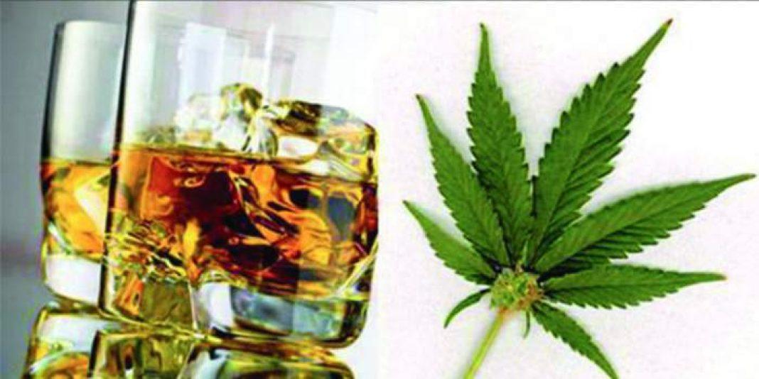Przemoc domowa, zgony, uzależnienia, choroby serca, nowotwory to tylko część negatywnych skutków, których przyczyny naukowcy przeanalizowali na podstawie używania alkoholu i marihuany. Wnikliwe badania ukazały się na łamach focus.pl Oczywiście alkohol jest używką, której skutki działania badane są od dziesięcioleci, czego o marihuanie nie można powiedzieć, jednak wyniki analiz i porównań tych dwóch używek są naprawdę ciekawe.