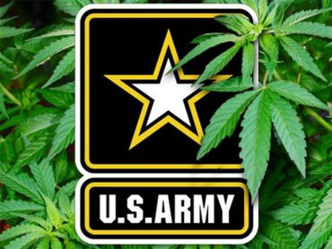 Zamiast importować poliester i polimer, chcą wykorzystać konopne włókna. Mowa o amerykańskiej armii, która przy współpracy z naukowcami z Uniwersytetu Wisconsin zamierza wykorzystać tkaniny z konopi siewnych w wojskowych pojazdach i nie tylko.