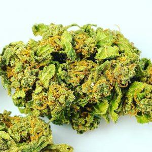 Owocowy profil terpenowy, aromat truskawki i przewaga genetyki Sativa. Tak w skrócie można zdefiniować odmianę marihuany Strawberry Haze, a dokładnie Arjan's Strawberry Haze stworzonej przez Green House Seeds Company i nazwaną na cześć Arjana Roskama.