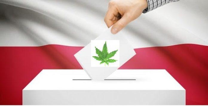 Już w najbliższą niedzielę będziemy wybierać prezydenta RP. Przy tej okazji postanowiliśmy sprawdzić w sieci jak część z kandydatów walczących o najwyższy urząd w państwie podchodzi do legalizacji rekreacyjnej marihuany. Rozsyłaliśmy oczywiście w tej sprawie pytania do komitetów wyborczych, ale temat został przemilczany. Przypadek? A może w obliczu wyborów prezydenckich ta kwestia jest dla kandydatów niezbyt wygodna.