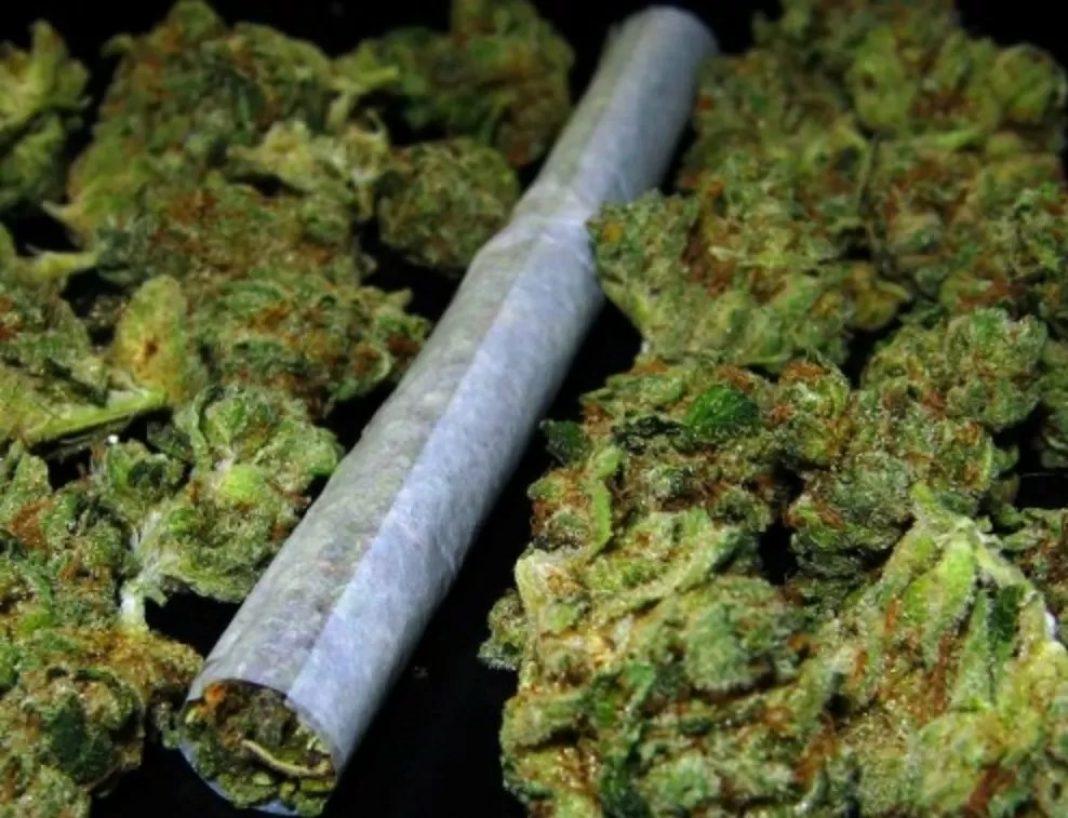 Obsesje, natręctwa, pieniactwo i lęki można zniwelować poprzez palenie zioła. Wskazują na to badania przeprowadzone przez Washington State University. U osób z zaburzeniami obsesyjno-kompulsywnymi po marihuanie objawy zmalały o połowę!