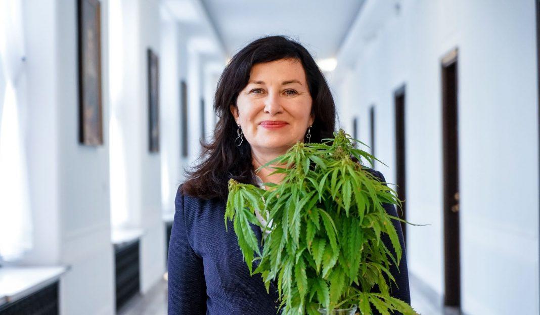 Chociaż polskich parlamentarzystów wiele kwestii dzieli, to w temacie dekryminalizacji marihuany starają się działać ponad podziałami. Przykładem tego jest Parlamentarny Zespół ds. Legalizacji Marihuany, który zajmuje się również regulacjami przepisów dotyczących marihuany medycznej i konopi siewnych.