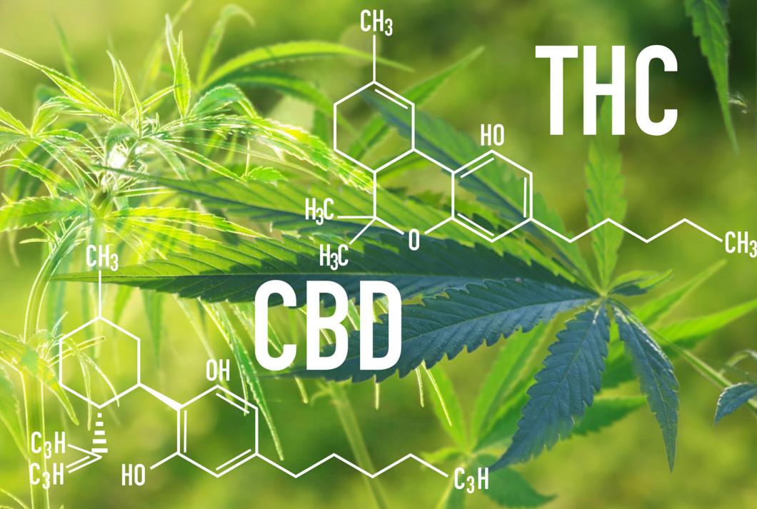 CBD i THC