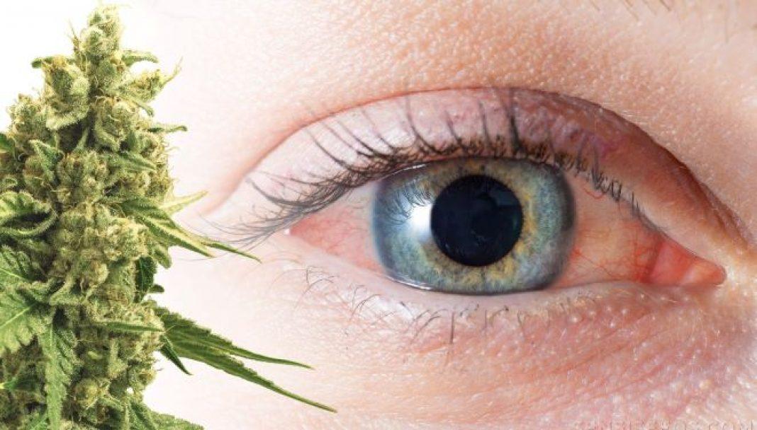 Chociaż wiele osób palących marihuanę uważa, że nie wpływa to negatywnie na ich wzrok, to na co innego wskazują najnowsze badania naukowe. Przeprowadzono je na hiszpańskim uniwersytecie w Granadzie.