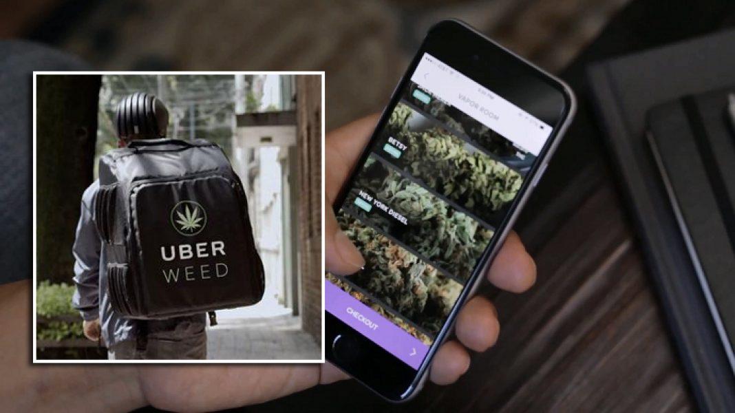 To będzie w pełni legalna usługa, którą Uber chce świadczyć tam gdzie marihuana do celów rekreacyjnych jest dopuszczona przez prawo. O dostawie konopi indyjskich przez przewoźnika w USA mówi się coraz poważniej.